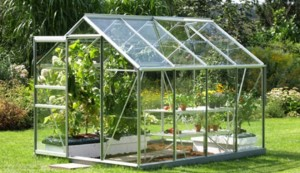 0294017E03261478-c1-photo-serre-de-jardin-en-verre